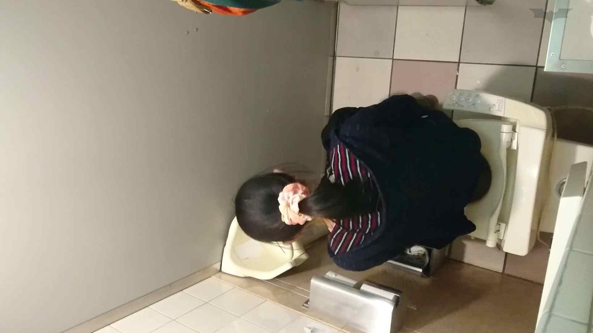 化粧室絵巻 ショッピングモール編 VOL.18 美肌  79PIX 35