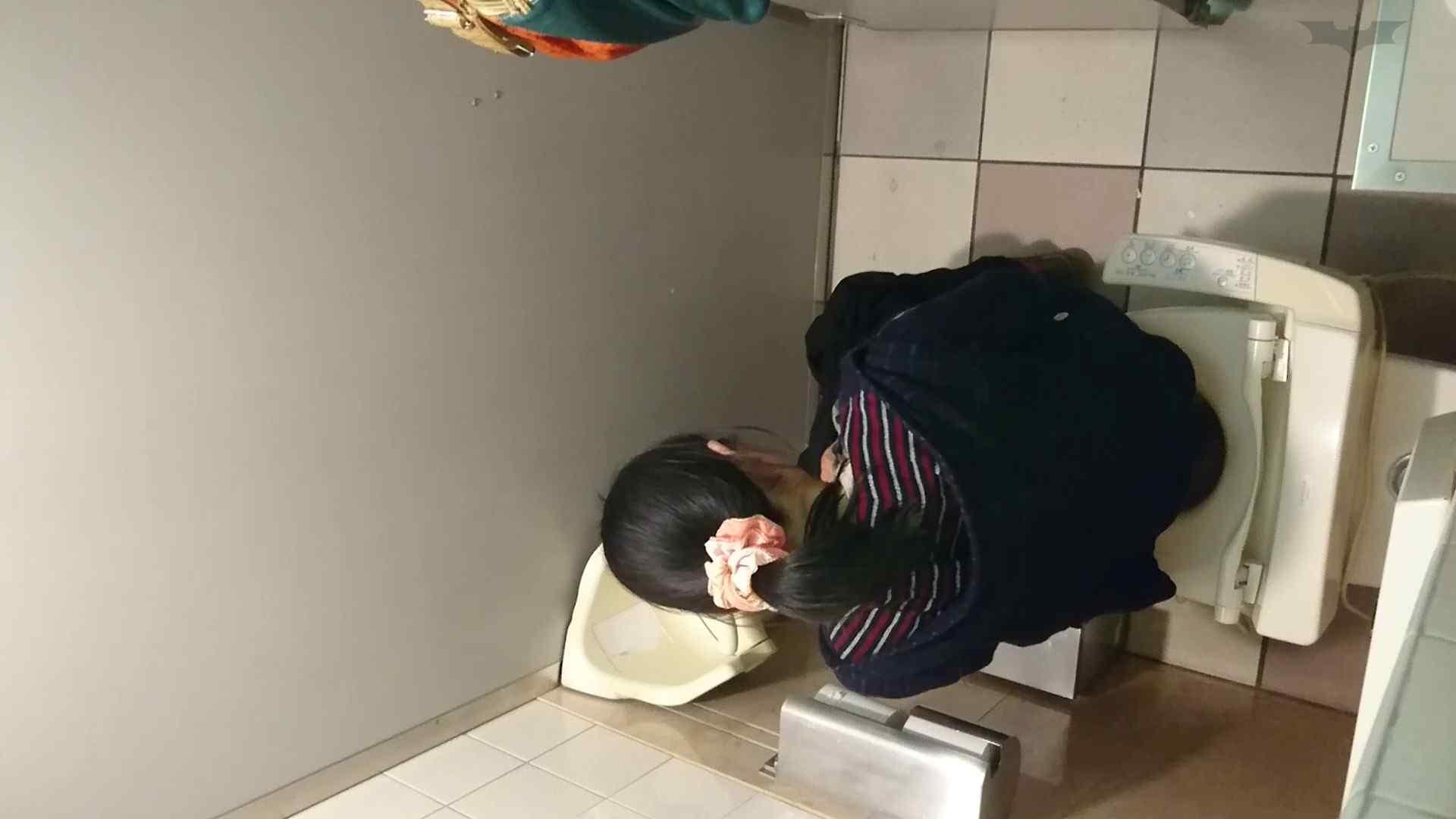 化粧室絵巻 ショッピングモール編 VOL.18 美肌  79PIX 36
