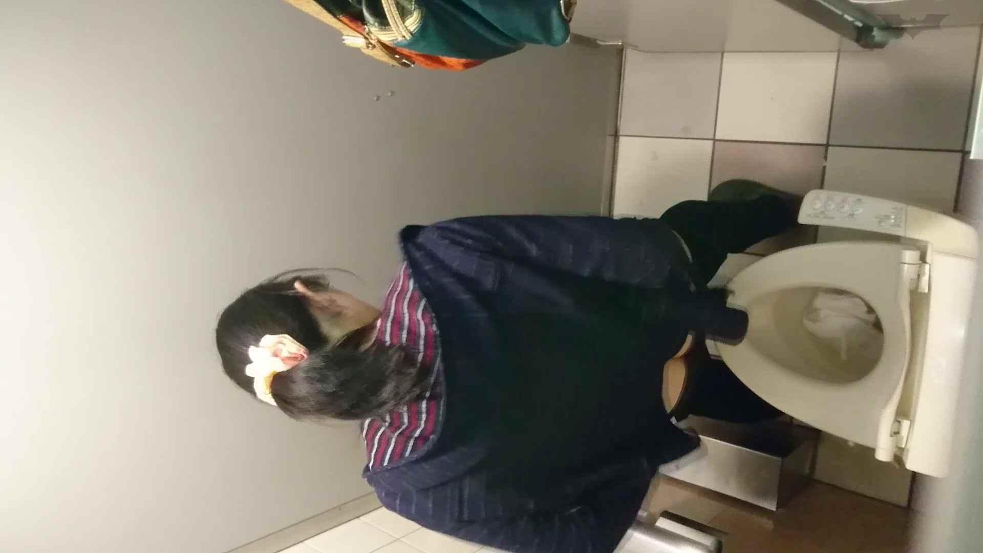化粧室絵巻 ショッピングモール編 VOL.18 美肌  79PIX 43