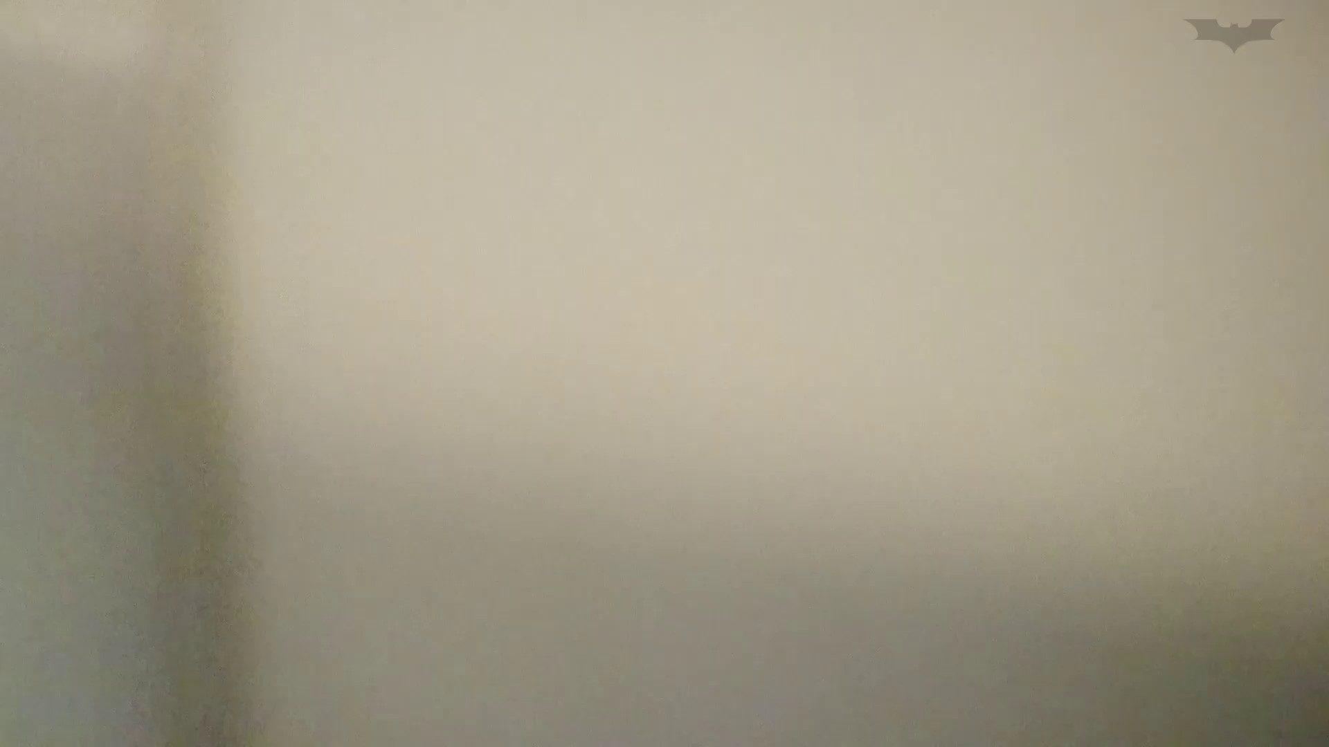 化粧室絵巻 ショッピングモール編 VOL.18 美肌  79PIX 52