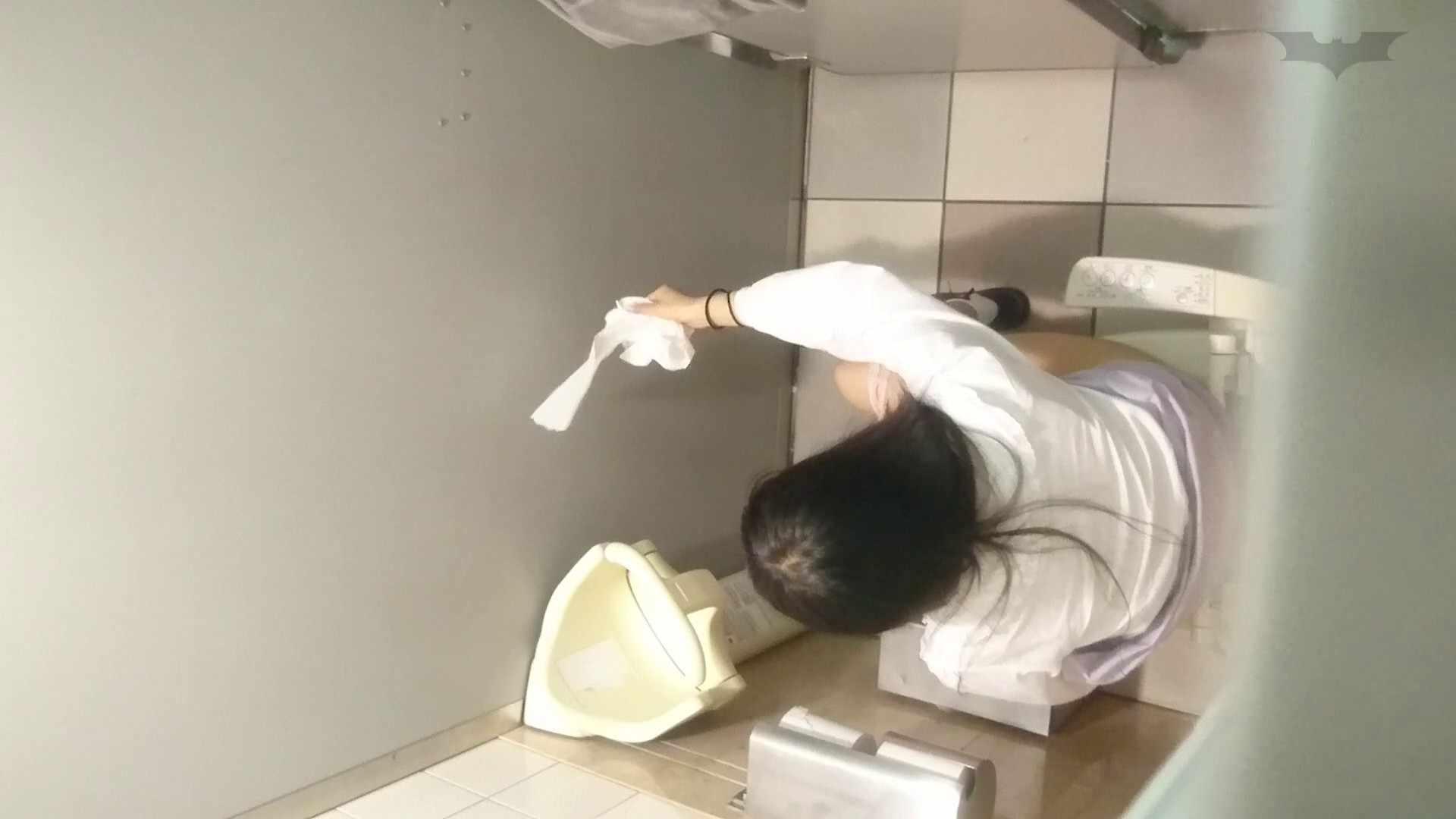 化粧室絵巻 ショッピングモール編 VOL.25 高評価  56PIX 22