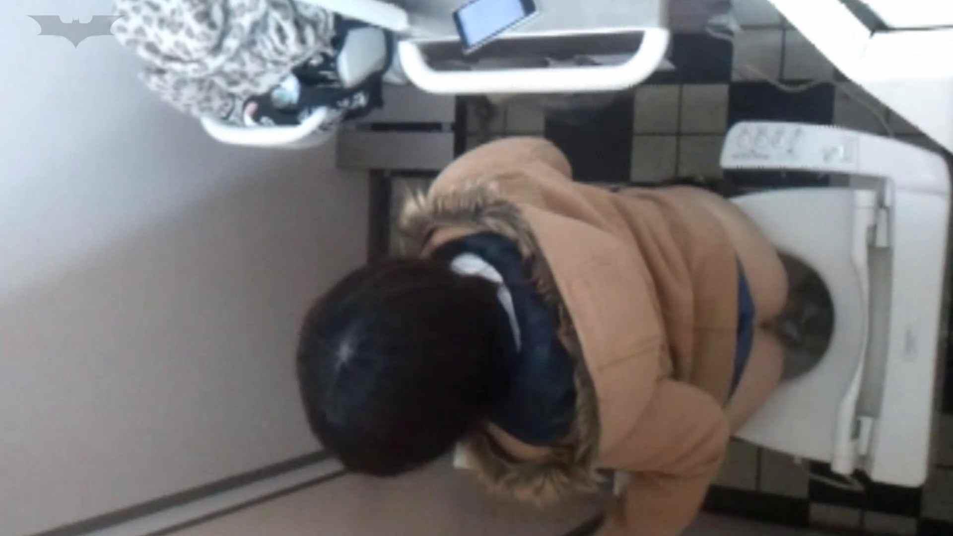 化粧室絵巻 駅舎編 VOL.17 後ろ姿美人のおねぇたん!! 盛合せ  83PIX 13