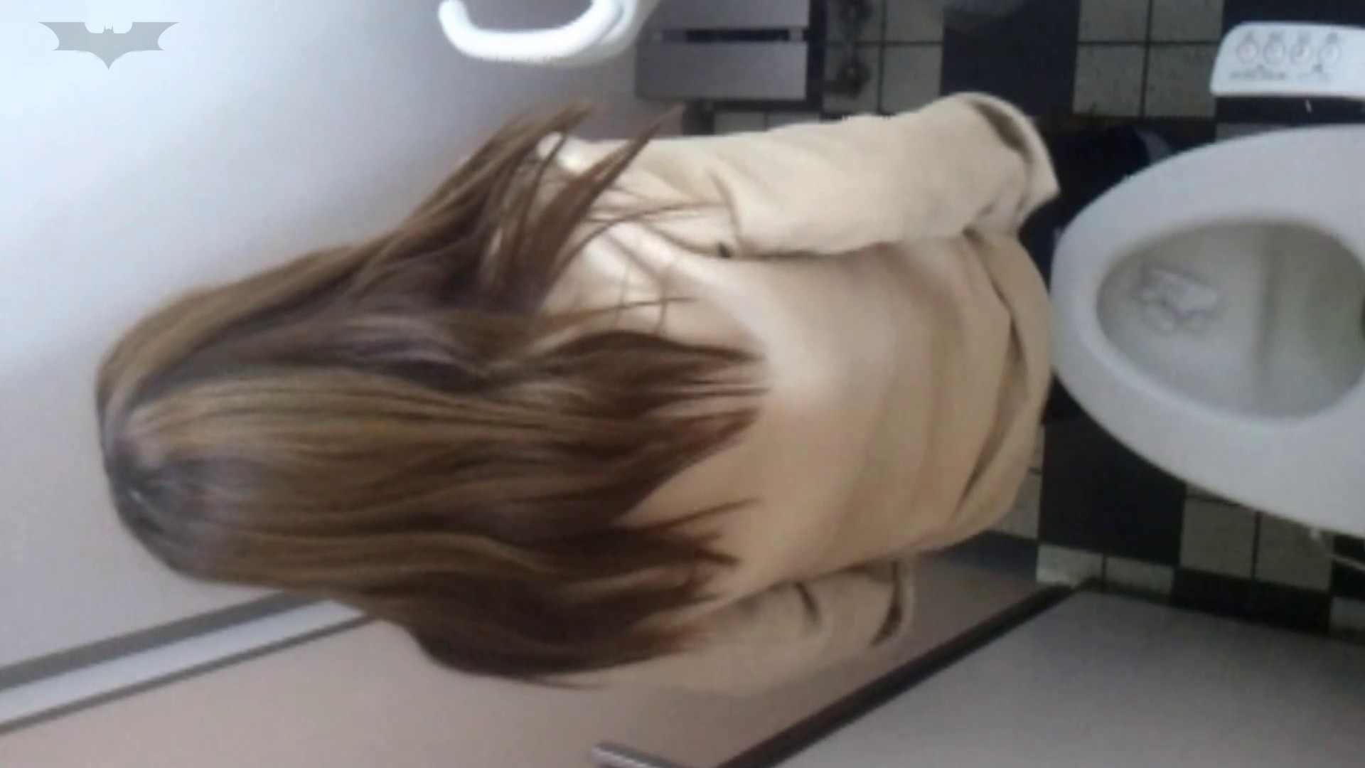 化粧室絵巻 駅舎編 VOL.17 後ろ姿美人のおねぇたん!! 盛合せ  83PIX 58