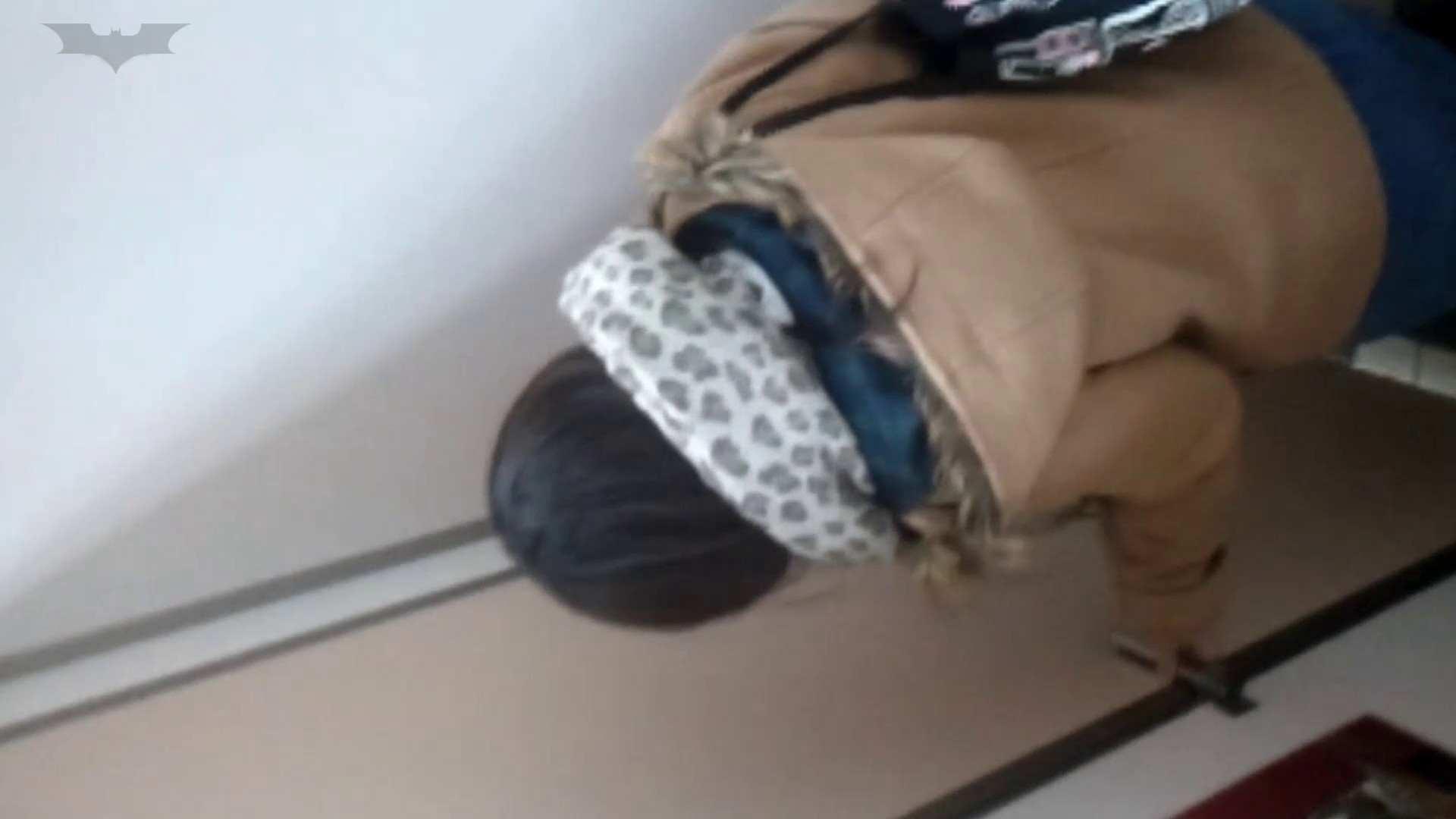 化粧室絵巻 駅舎編 VOL.17 後ろ姿美人のおねぇたん!! 盛合せ  83PIX 61