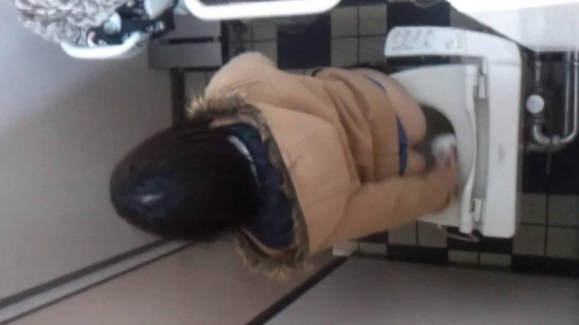 化粧室絵巻 駅舎編 VOL.17 後ろ姿美人のおねぇたん!! 盛合せ  83PIX 72