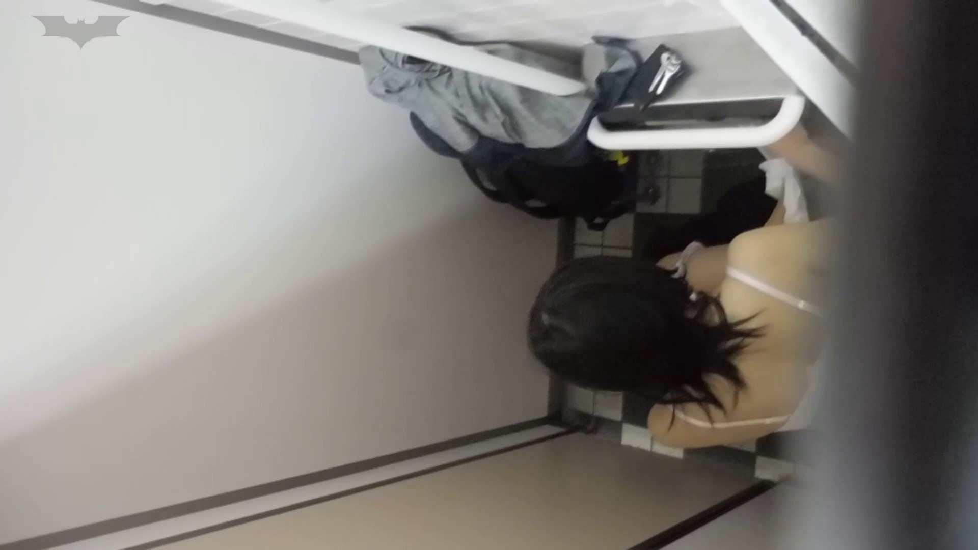 化粧室絵巻 駅舎編 VOL.20 今回は・・・ファッ!! 盛合せ  88PIX 16