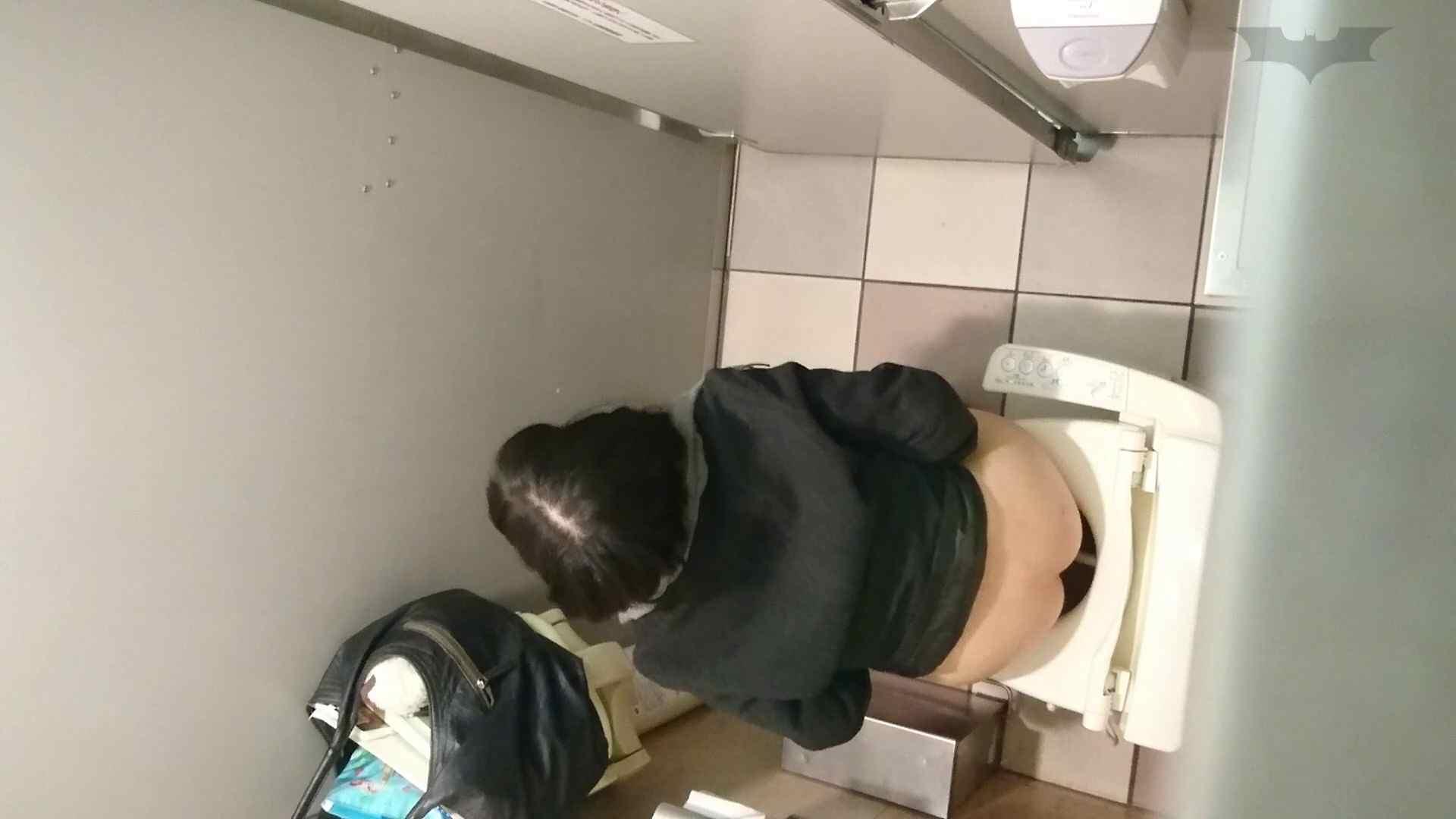 化粧室絵巻 ショッピングモール編 VOL.09 美肌  97PIX 25