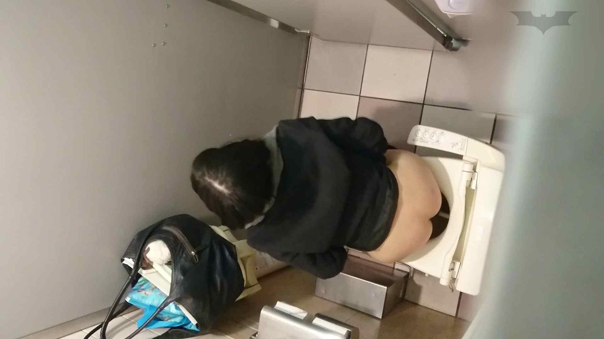化粧室絵巻 ショッピングモール編 VOL.09 美肌  97PIX 44