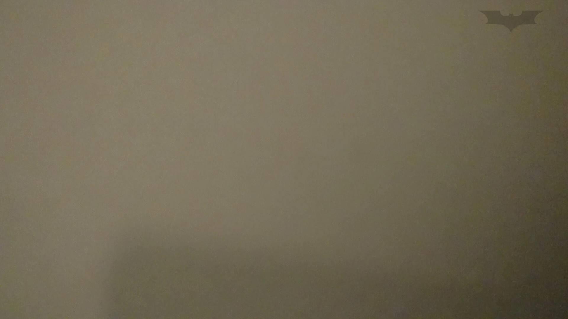 化粧室絵巻 ショッピングモール編 VOL.09 美肌  97PIX 65