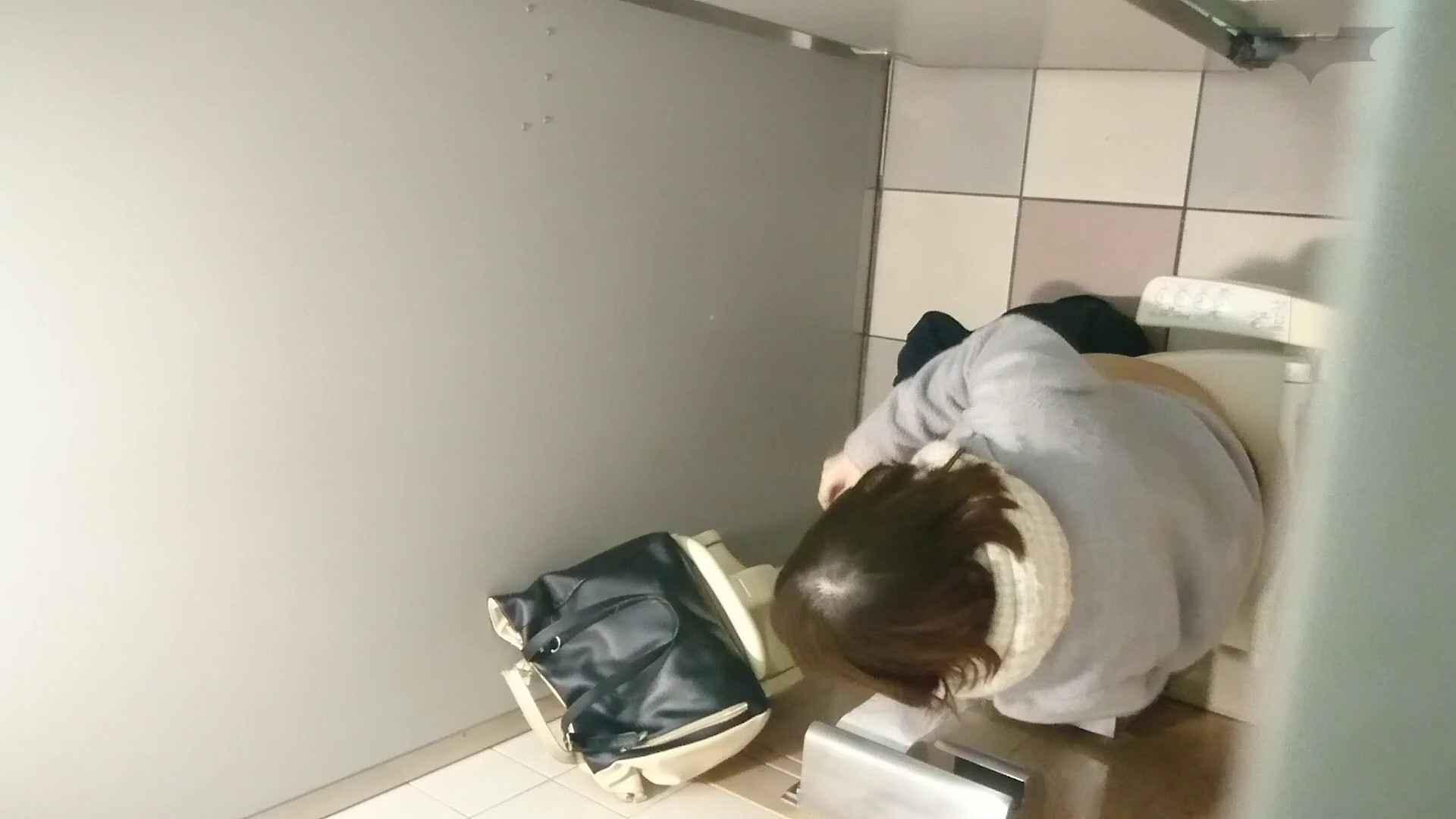 化粧室絵巻 ショッピングモール編 VOL.12 美肌  71PIX 35