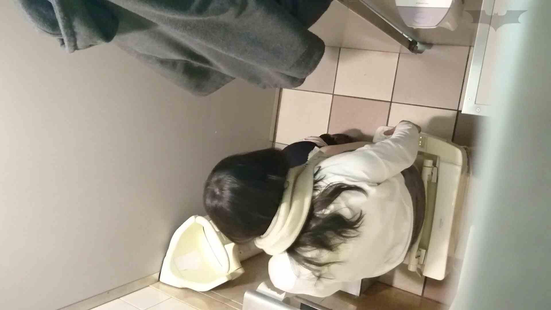 化粧室絵巻 ショッピングモール編 VOL.12 美肌  71PIX 52