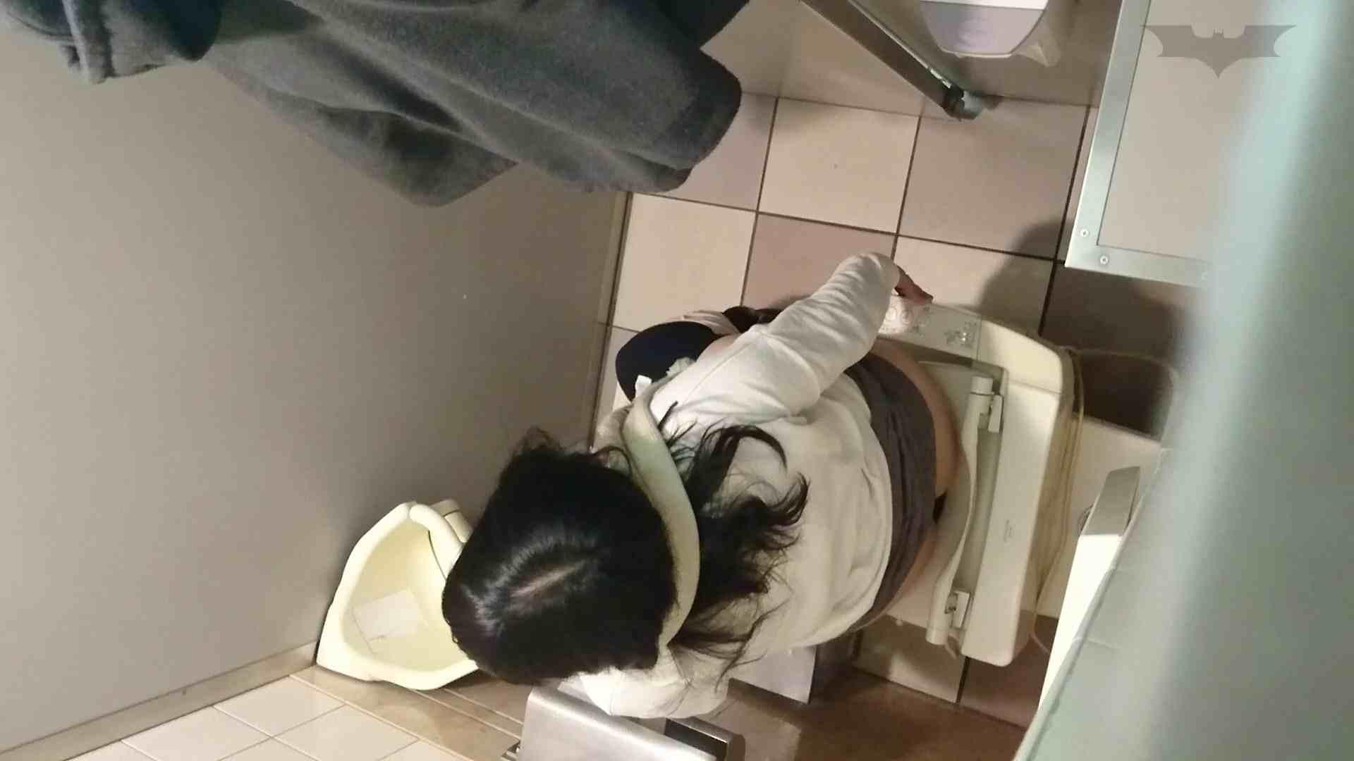 化粧室絵巻 ショッピングモール編 VOL.12 美肌  71PIX 56