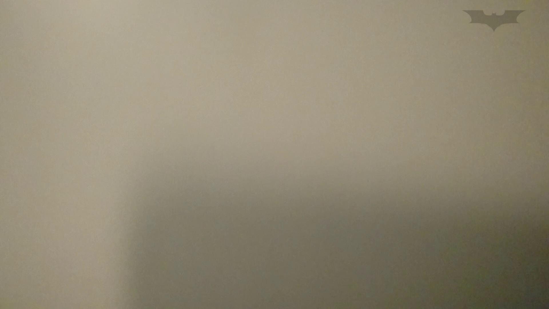 化粧室絵巻 ショッピングモール編 VOL.13 盛合せ  65PIX 34