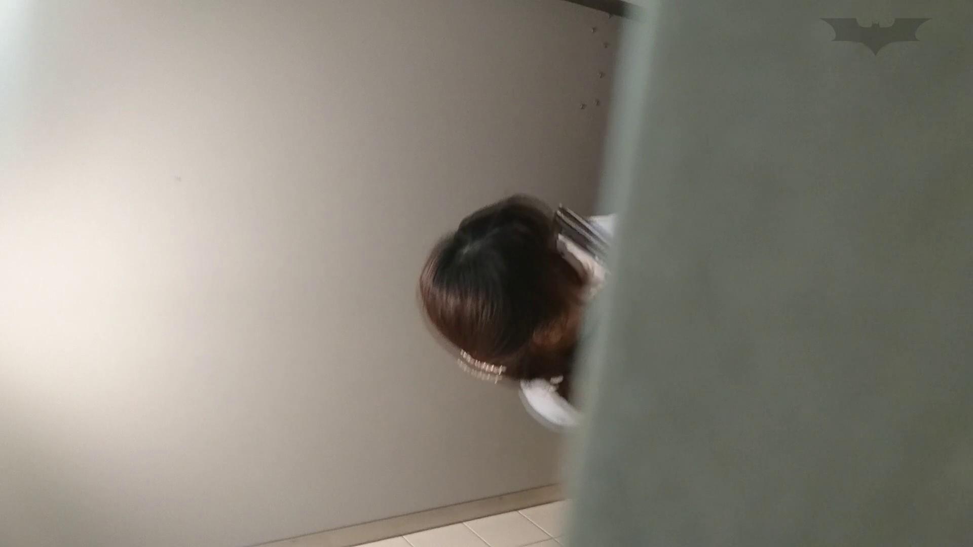 化粧室絵巻 ショッピングモール編 VOL.13 盛合せ  65PIX 52