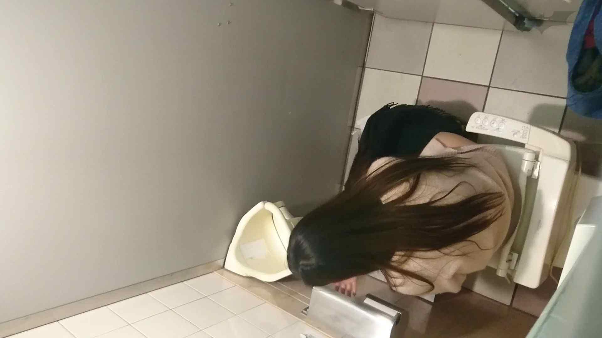 化粧室絵巻 ショッピングモール編 VOL.15 盛合せ  51PIX 34