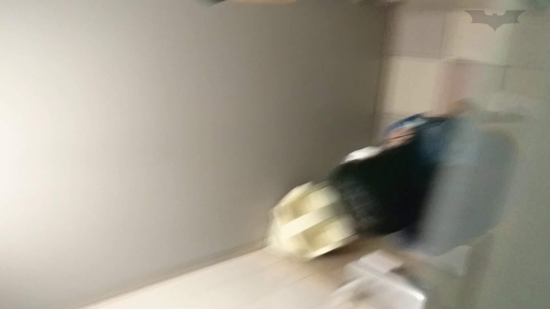 化粧室絵巻 ショッピングモール編 VOL.15 盛合せ  51PIX 47
