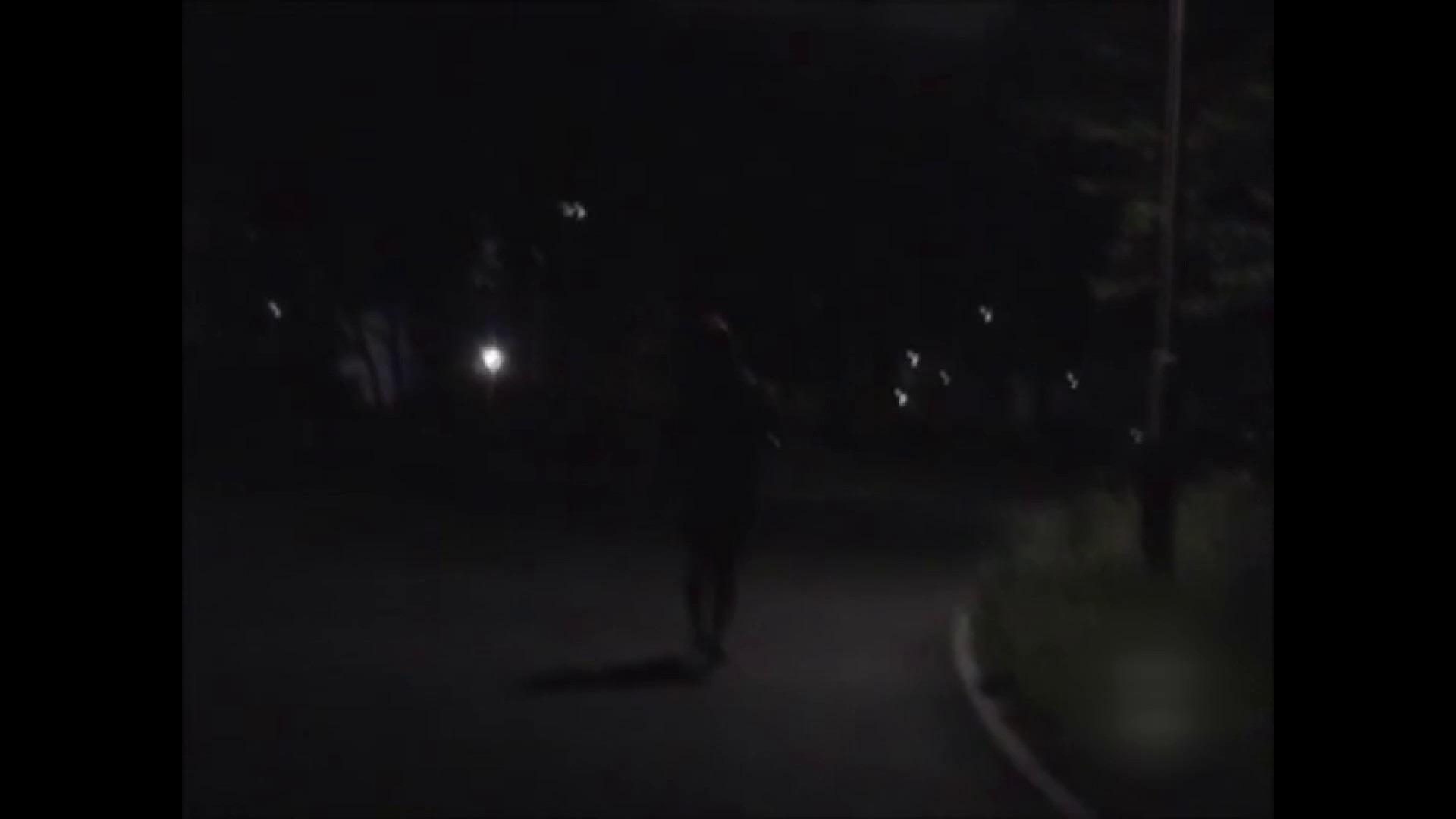 闇の性獣 レ●プ闇の事件簿 フェラ  97PIX 67