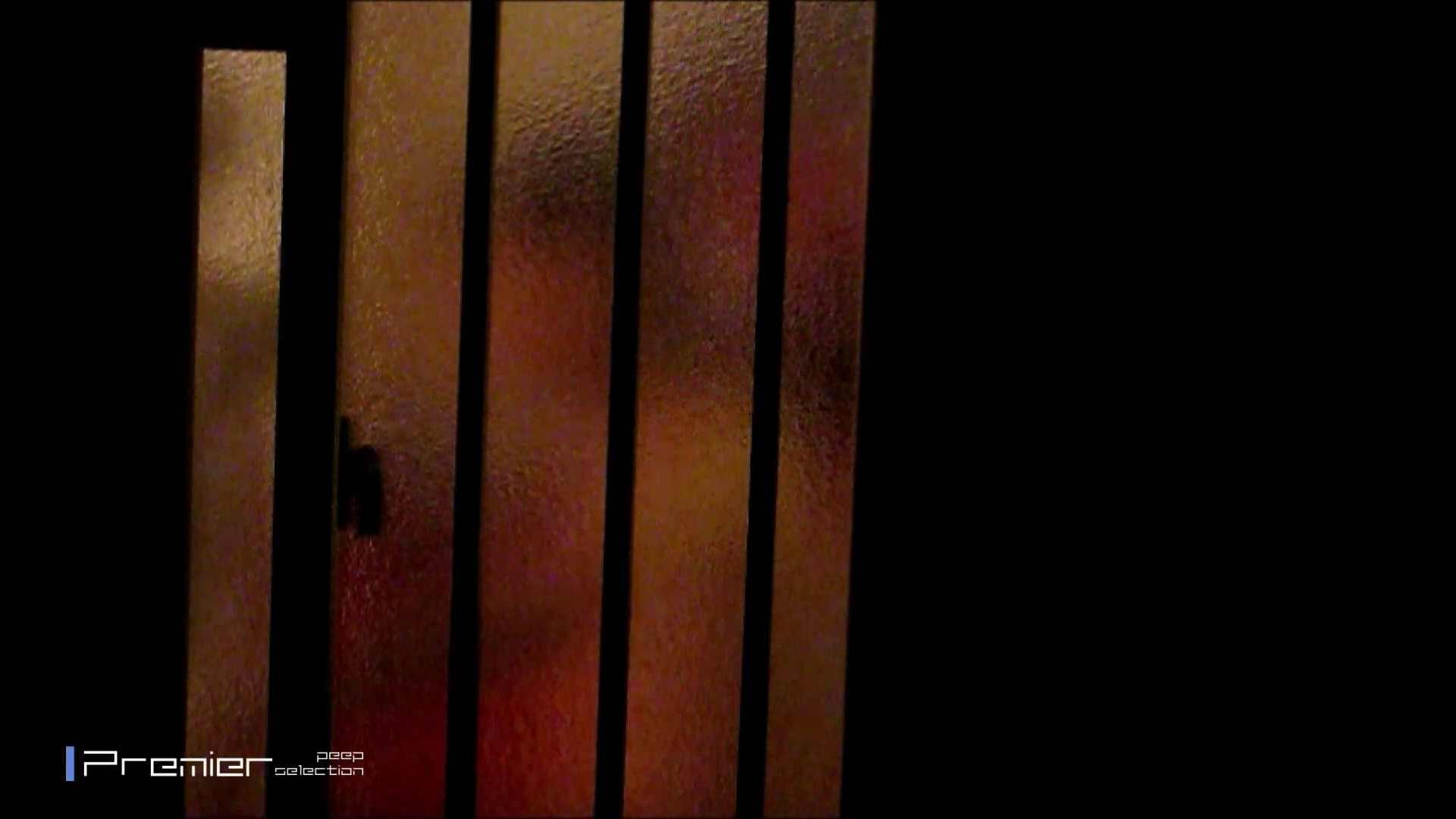 スレンダー美女の桃色乳首 乙女の風呂場 Vol.09 盗撮  96PIX 65