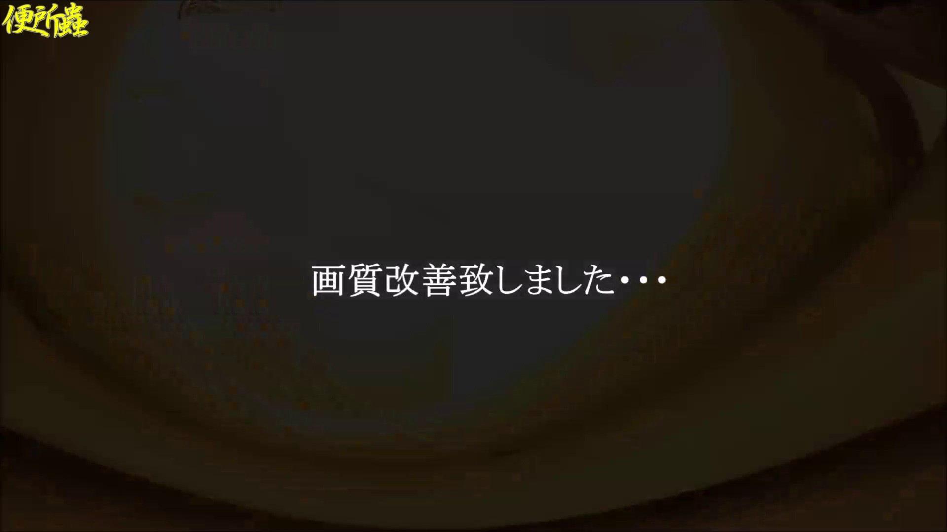 vol.13 便所蟲さんのリターン~寺子屋洗面所盗撮~ 便所  104PIX 104