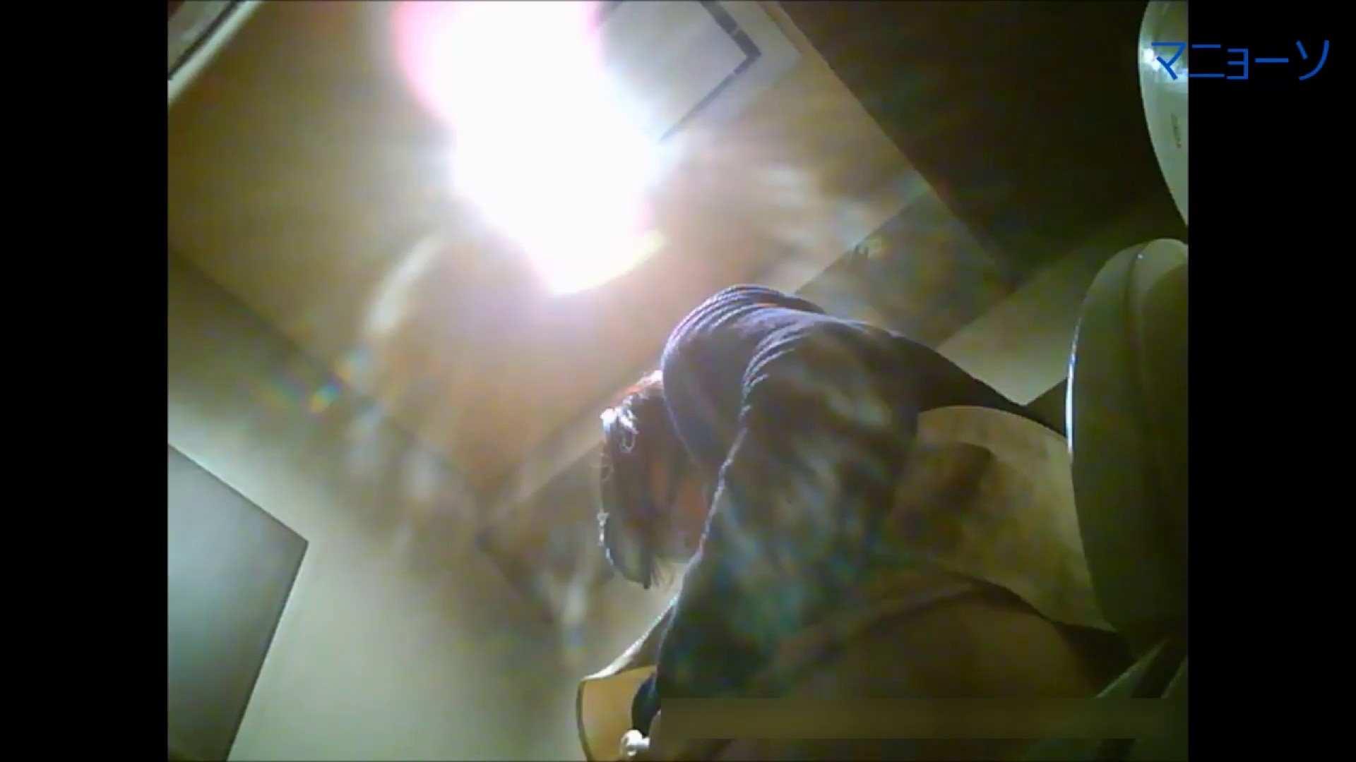 トイレでひと肌脱いでもらいました (OL編)Vol.06 お姉さん  76PIX 25
