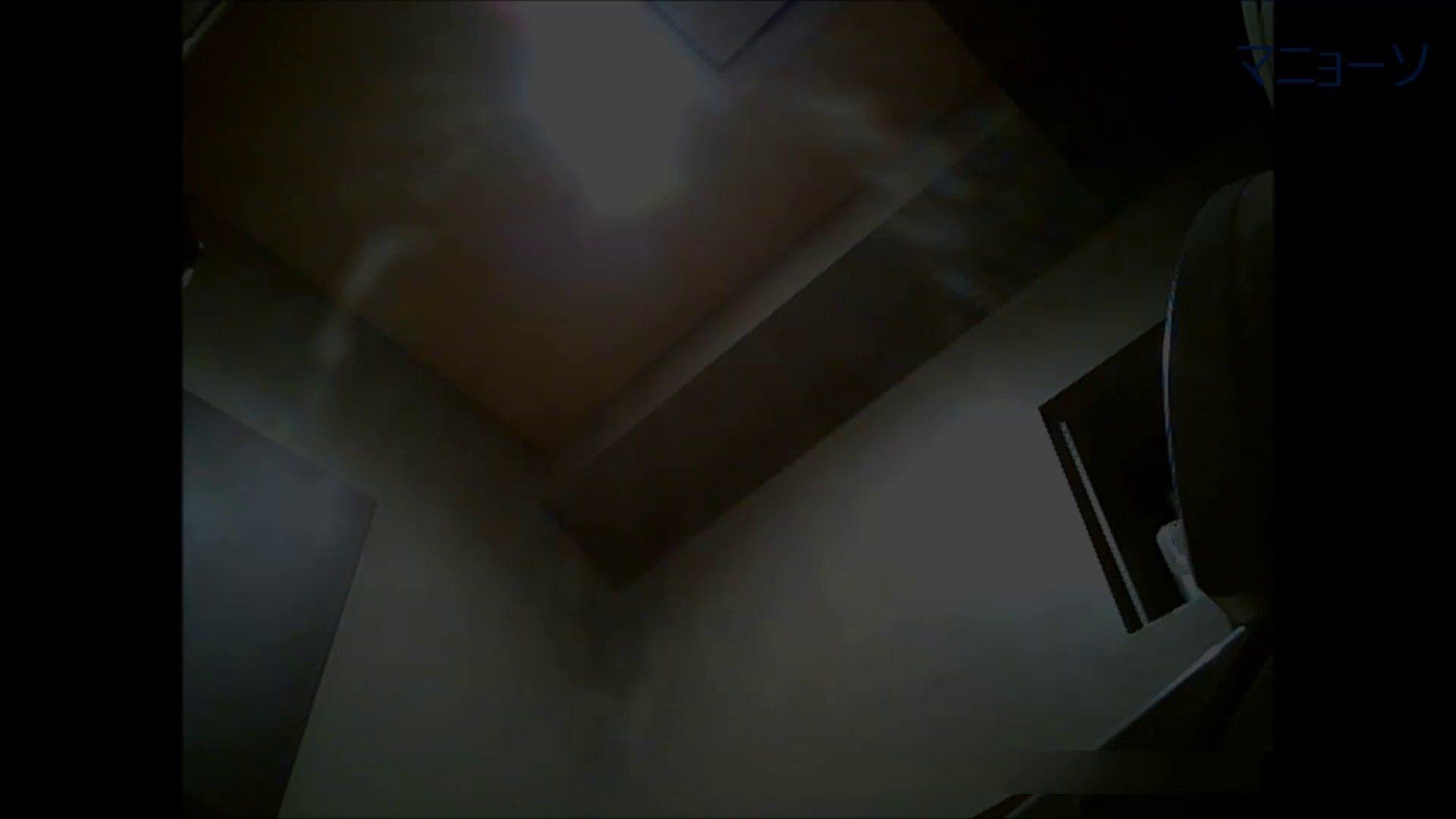 トイレでひと肌脱いでもらいました (OL編)Vol.06 お姉さん  76PIX 53