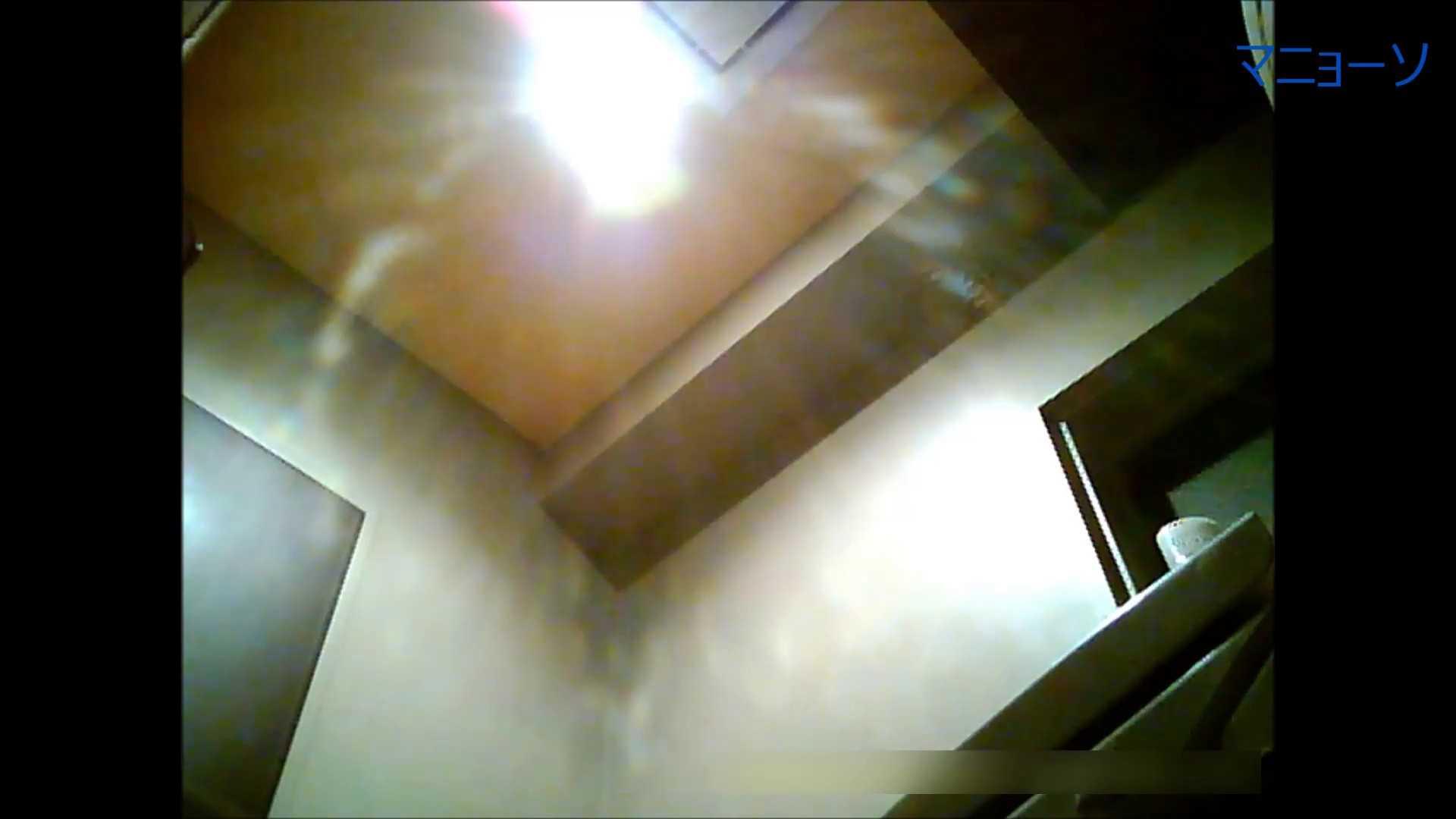 トイレでひと肌脱いでもらいました (OL編)Vol.06 お姉さん  76PIX 69