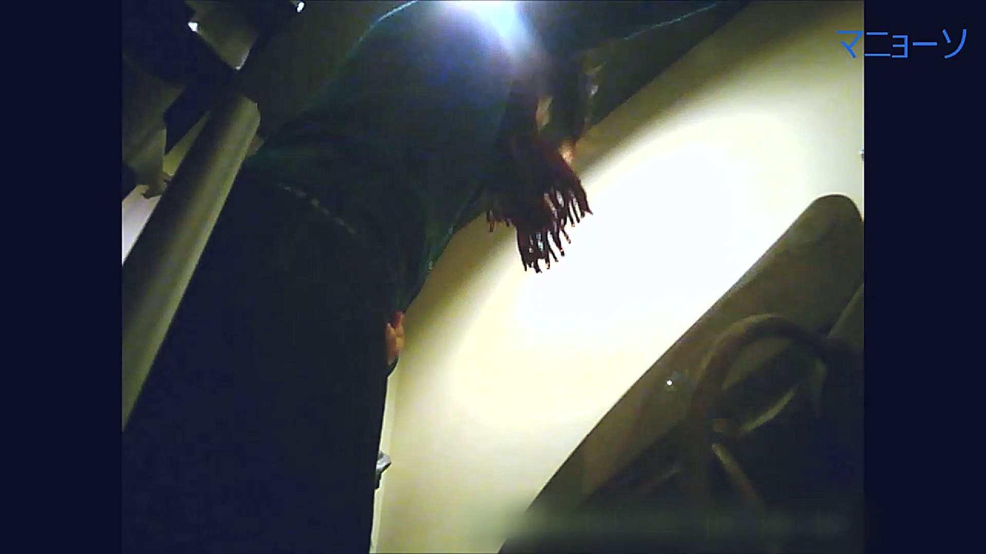 トイレでひと肌脱いでもらいました (JD編)Vol.07 お姉さん  95PIX 16