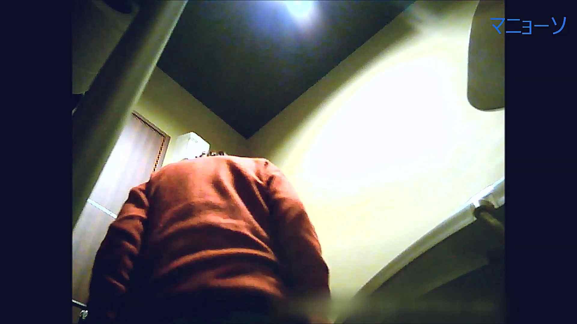 トイレでひと肌脱いでもらいました (JD編)Vol.07 お姉さん  95PIX 30