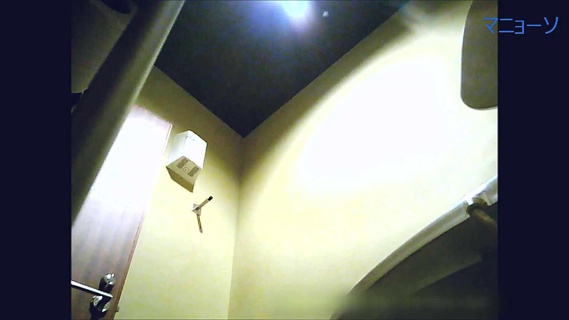 トイレでひと肌脱いでもらいました (JD編)Vol.07 お姉さん  95PIX 33