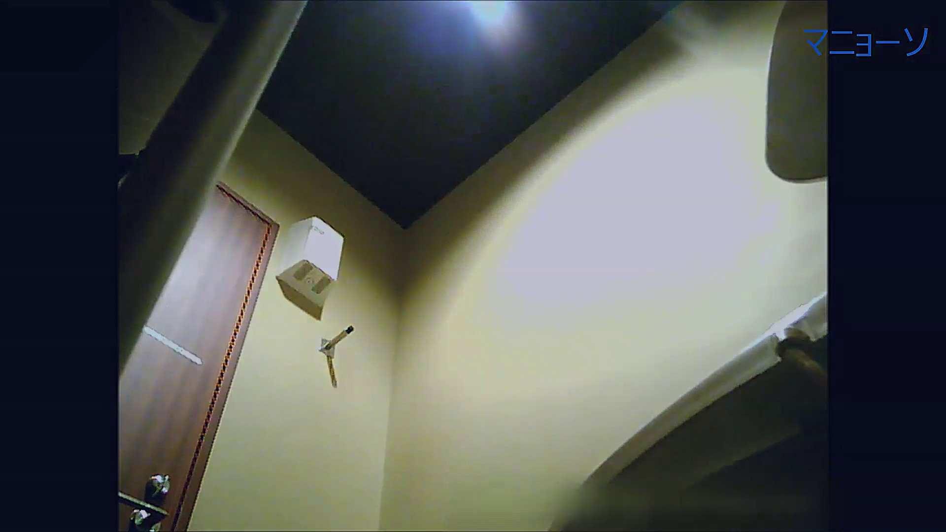 トイレでひと肌脱いでもらいました (JD編)Vol.07 お姉さん  95PIX 35