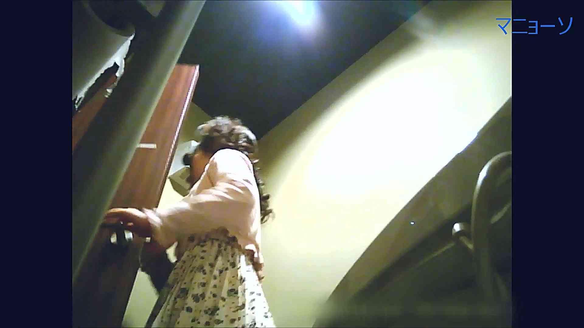 トイレでひと肌脱いでもらいました (JD編)Vol.07 お姉さん  95PIX 68