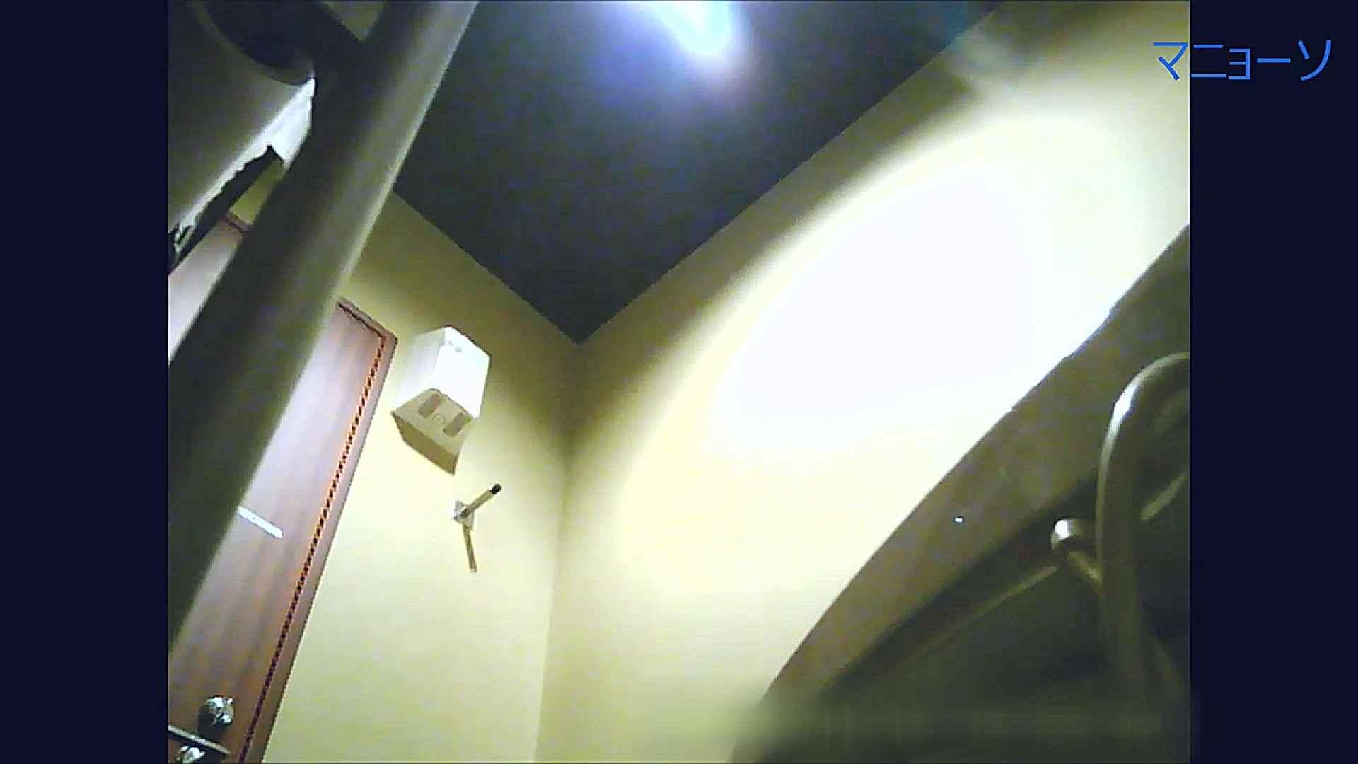 トイレでひと肌脱いでもらいました (JD編)Vol.07 お姉さん  95PIX 71
