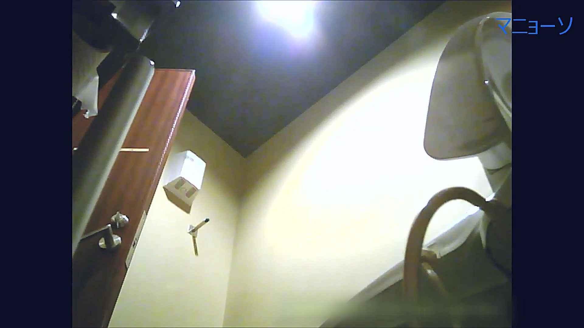トイレでひと肌脱いでもらいました (JD編)Vol.07 お姉さん  95PIX 76