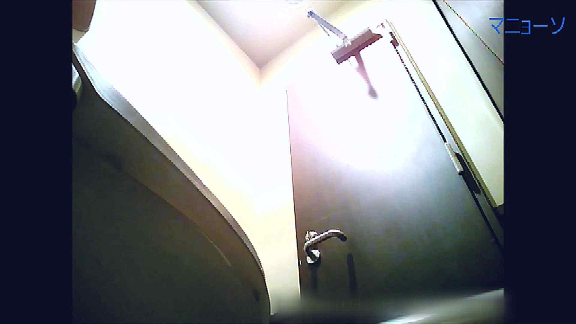 トイレでひと肌脱いでもらいました (OL編)Vol.08 高画質  82PIX 42