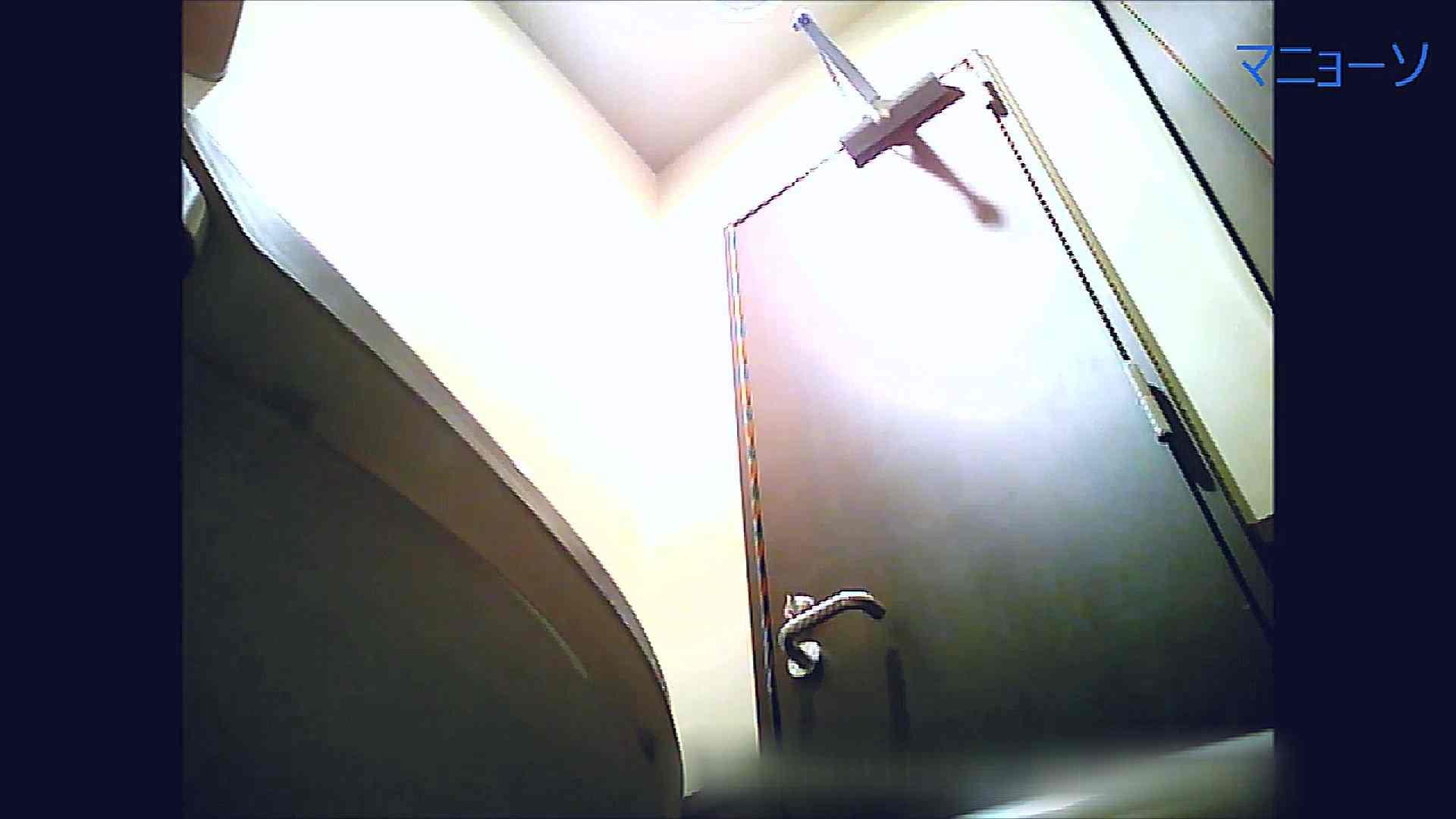 トイレでひと肌脱いでもらいました (OL編)Vol.08 高画質  82PIX 43