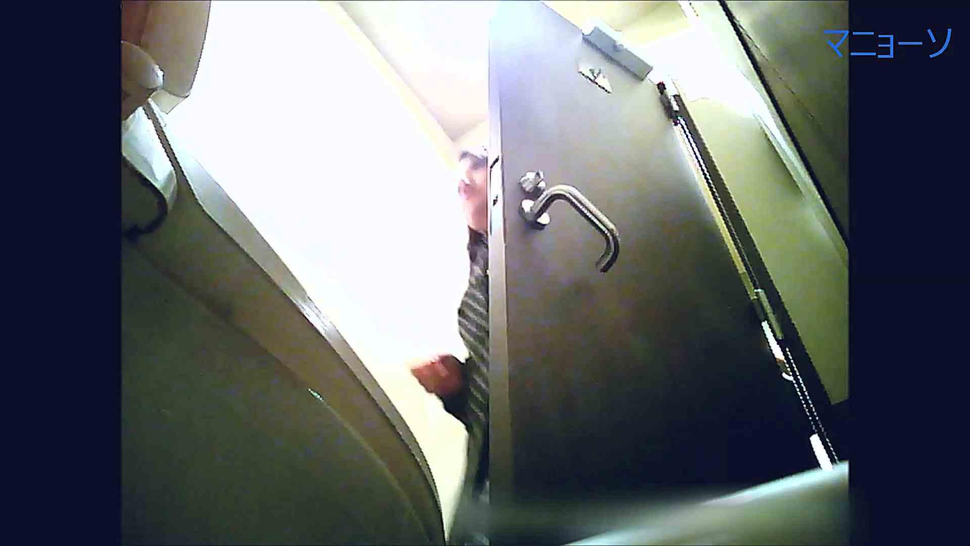 トイレでひと肌脱いでもらいました (OL編)Vol.08 高画質  82PIX 45
