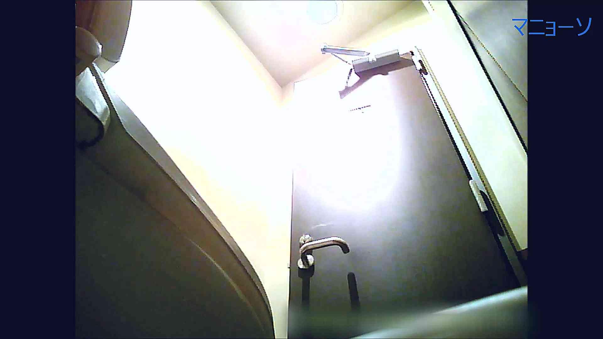 トイレでひと肌脱いでもらいました (OL編)Vol.08 高画質  82PIX 78