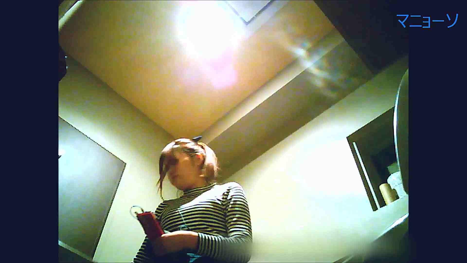 トイレでひと肌脱いでもらいました (OL編)Vol.12 お姉さん  90PIX 2