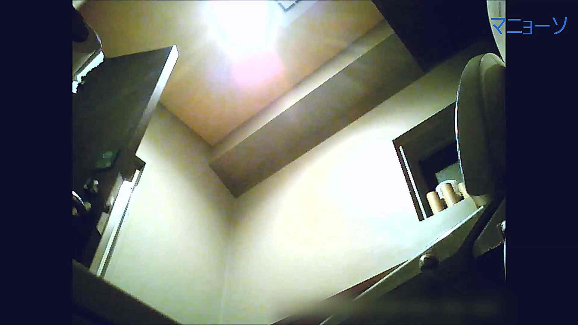 トイレでひと肌脱いでもらいました (OL編)Vol.12 お姉さん  90PIX 20