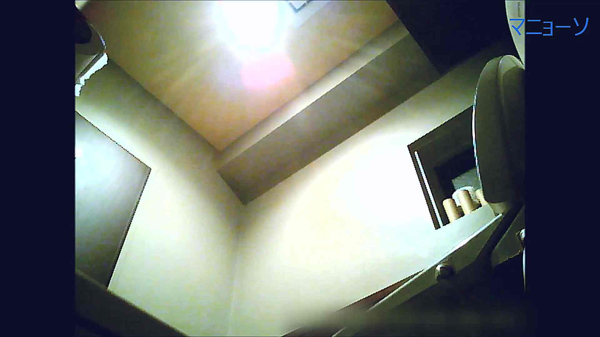 トイレでひと肌脱いでもらいました (OL編)Vol.12 お姉さん  90PIX 21