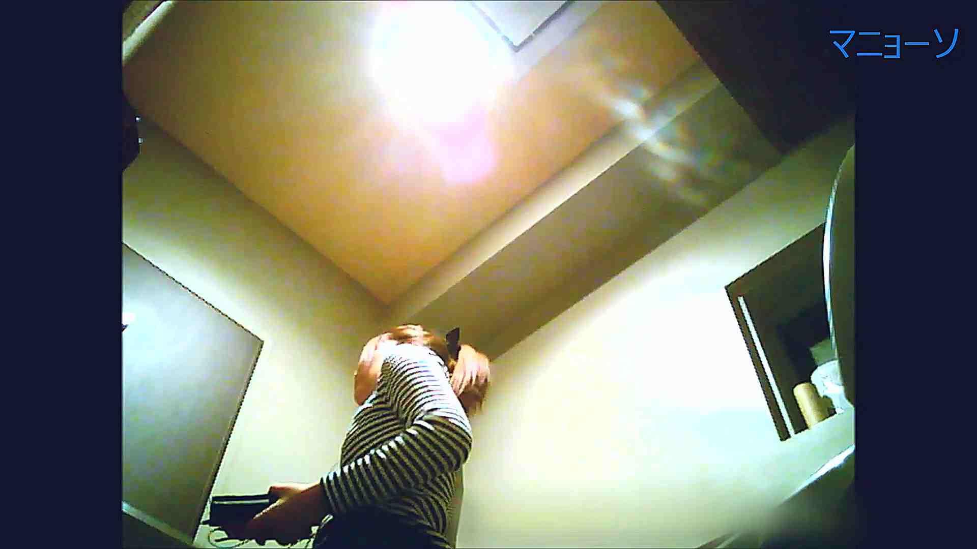 トイレでひと肌脱いでもらいました (OL編)Vol.12 お姉さん  90PIX 42