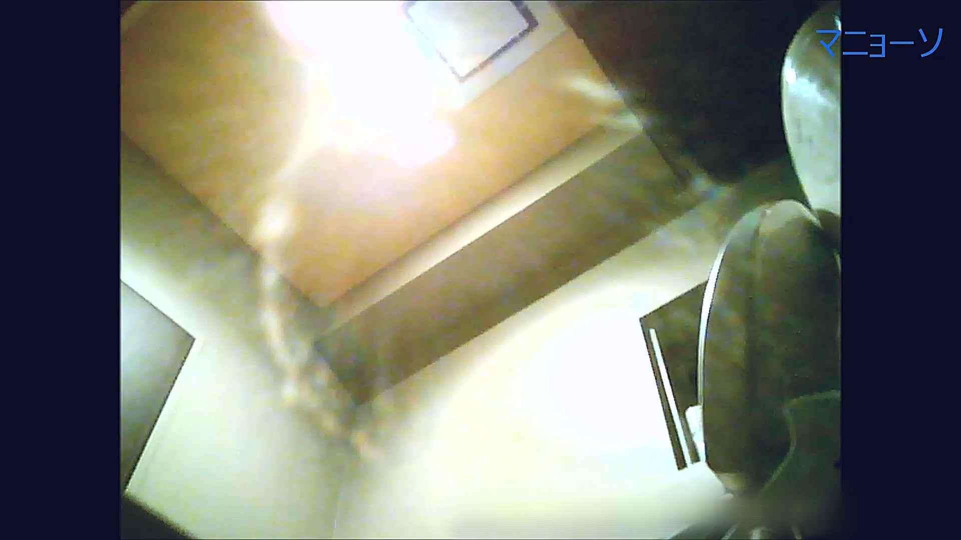 トイレでひと肌脱いでもらいました (OL編)Vol.12 お姉さん  90PIX 77