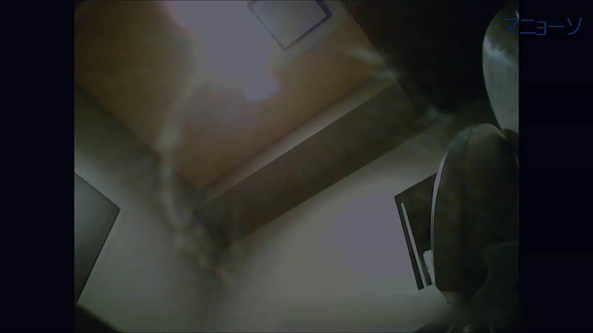 トイレでひと肌脱いでもらいました (OL編)Vol.12 お姉さん  90PIX 79