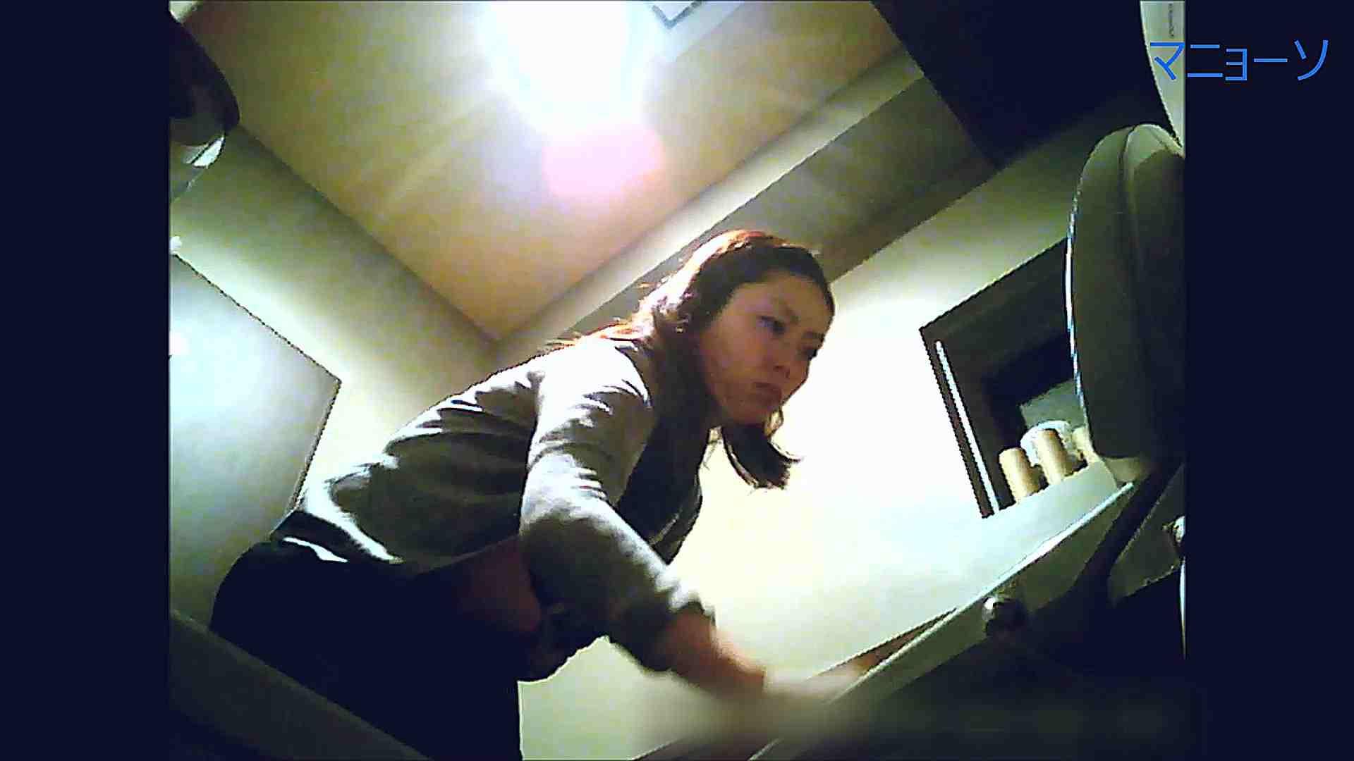 トイレでひと肌脱いでもらいました (OL編)Vol.12 お姉さん  90PIX 85