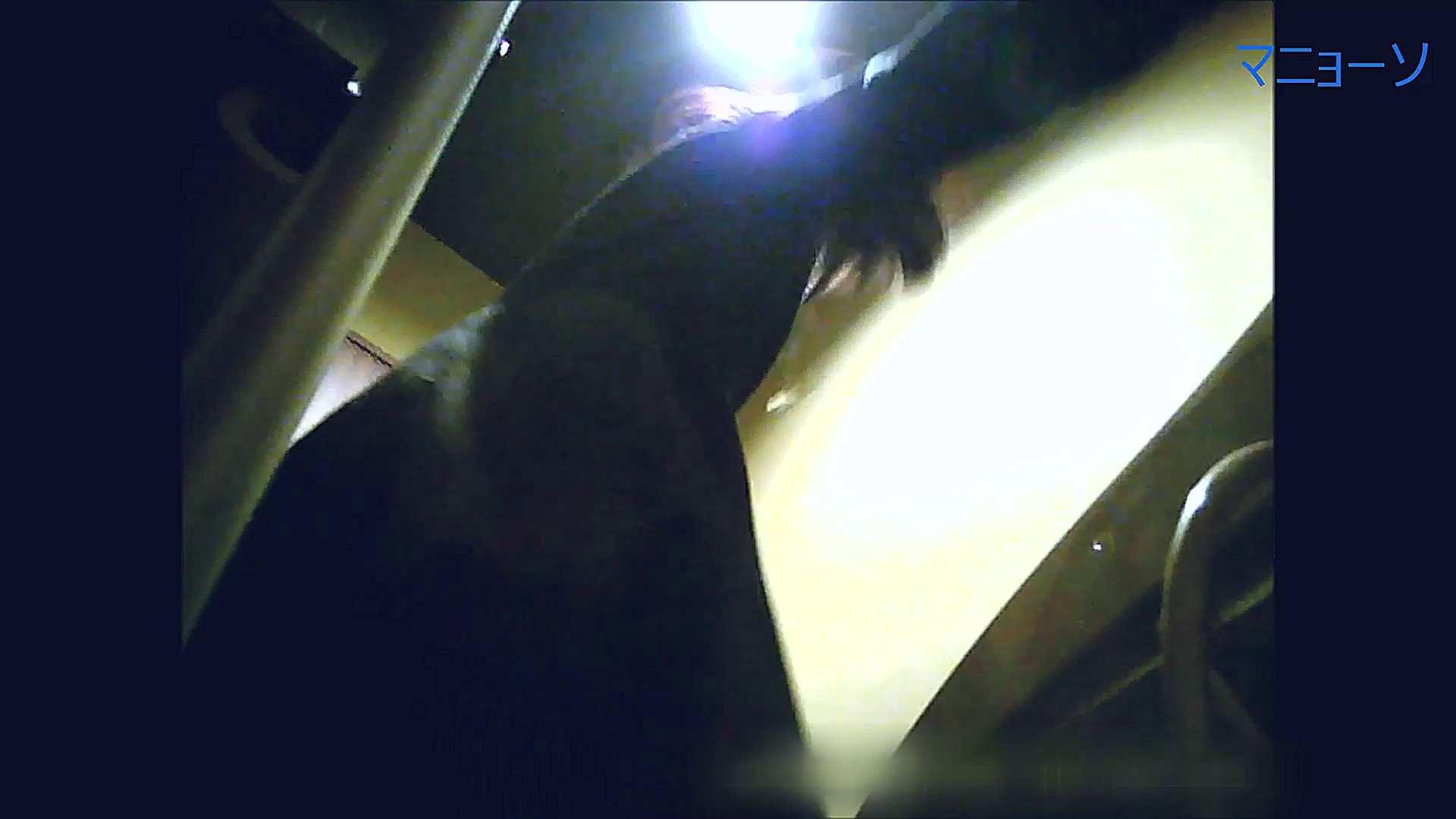 トイレでひと肌脱いでもらいました (OL編)Vol.14 トイレ  84PIX 41