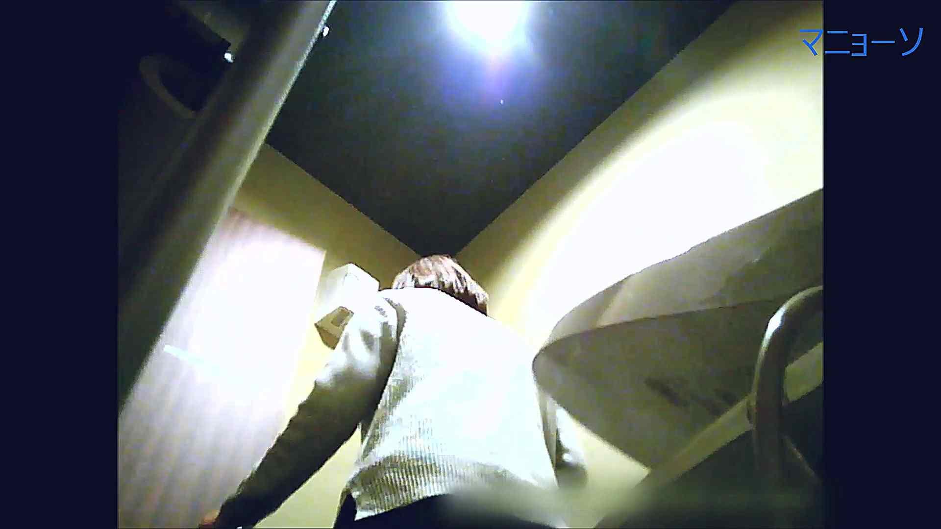 トイレでひと肌脱いでもらいました (OL編)Vol.14 トイレ  84PIX 78