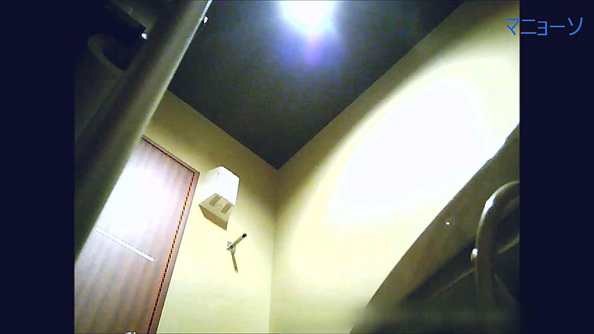 トイレでひと肌脱いでもらいました (OL編)Vol.14 トイレ  84PIX 80