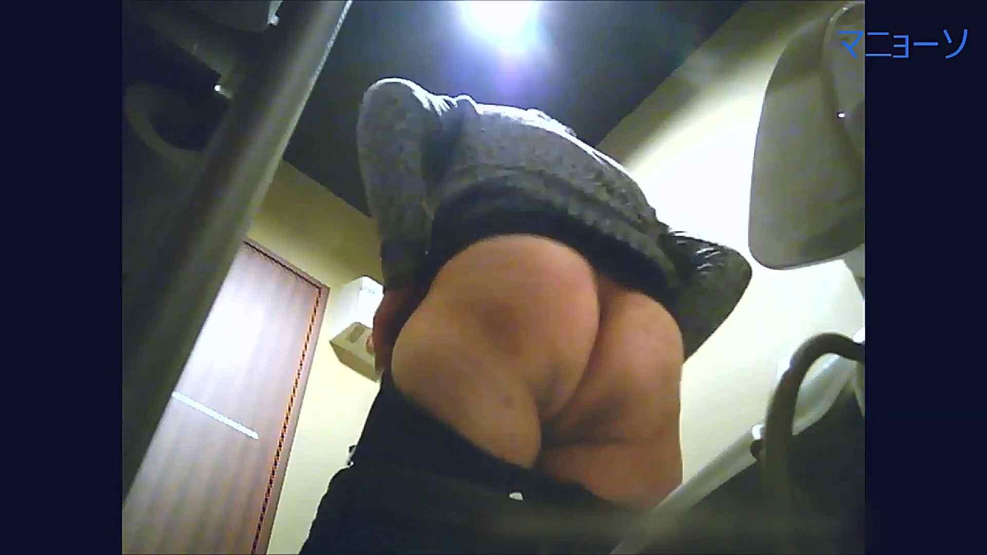 トイレでひと肌脱いでもらいました (番外編)Vol.03 お姉さん  53PIX 25