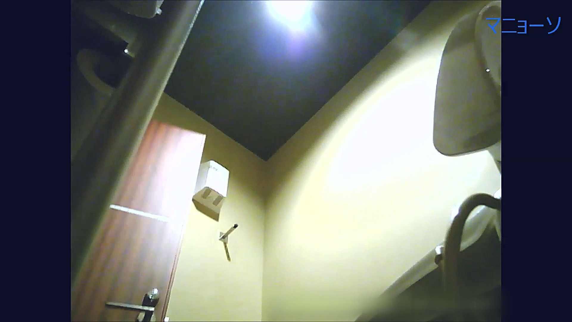 トイレでひと肌脱いでもらいました (番外編)Vol.03 お姉さん  53PIX 45