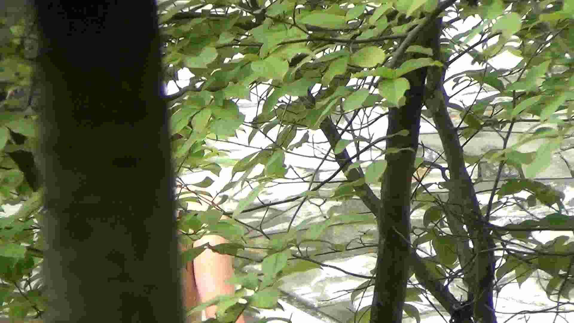 ハイビジョンVol.13 上は美人で下の下は薄いカーテン 美肌  104PIX 12